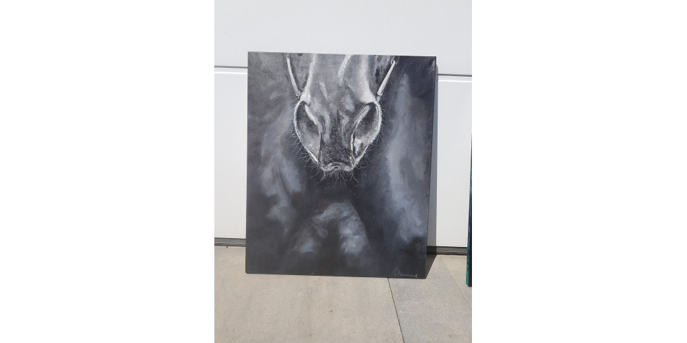 Obraz - Horse 540x540